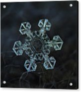 Real Snowflake - Ice Crown New Acrylic Print
