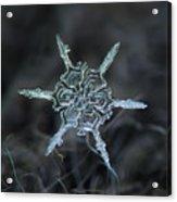 Real Snowflake Photo - The Shard Acrylic Print