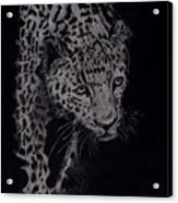 Realistic Cheeta Acrylic Print