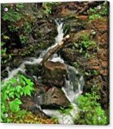 Reany Falls 5 Acrylic Print