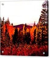 Red   Adventure  Acrylic Print
