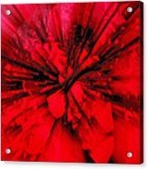 Red And Black Explosion Acrylic Print
