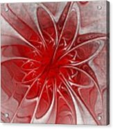 Red And Black  -f D- Acrylic Print