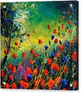 Red And Blue Poppies  Acrylic Print