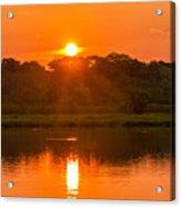 Red And Orange Jungle Sunset Acrylic Print