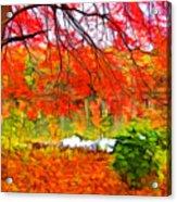Red And Orange Acrylic Print