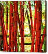 Red Bamboo Acrylic Print