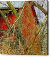 Red Barn Behind The Trees Acrylic Print