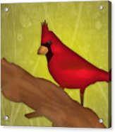 Red Bird Acrylic Print by Melisa Meyers