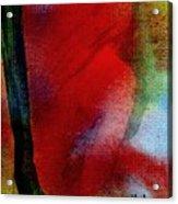 Red Boudoir Acrylic Print