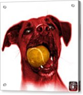 Red Boxer Mix Dog Art - 8173 - Wb Acrylic Print