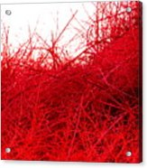 Red Expression Acrylic Print