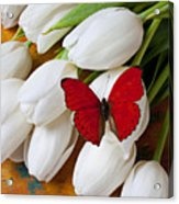 Red Butterfly On White Tulips Acrylic Print by Garry Gay