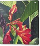 Red Cannas Acrylic Print by Deleas Kilgore