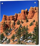 Red Canyon Hoodoos Acrylic Print