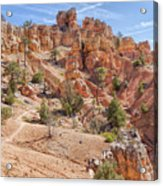 Red Canyon Trail Acrylic Print