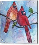 Red Cardinals Acrylic Print