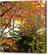 Red Charm Acrylic Print