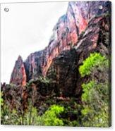 Red Cliffs Zion National Park Utah Usa Acrylic Print