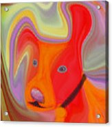 Red Dog Acrylic Print