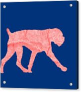 Red Dog Tee Acrylic Print