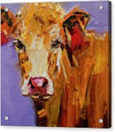 Red Earring Cow Acrylic Print