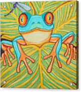 Red Eyed Tree Frog And Dragonfly Acrylic Print