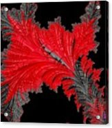 Red Feather - Abstract Acrylic Print