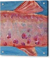 Red Fish Acrylic Print