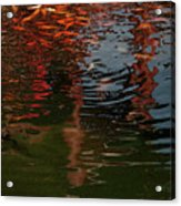 Red Fishes In A Pond Pictorial II Acrylic Print