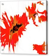 Red Floating Florals Acrylic Print