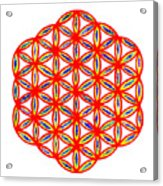Red Flower Of Life Acrylic Print
