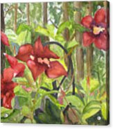 Red Flowers On The Deck Acrylic Print