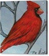 Red Fluff Acrylic Print