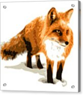 Red Fox In Winter Acrylic Print by DB Artist