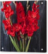 Red Gladiolus In Striped Vase Acrylic Print