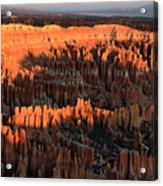 Red Glow Of The Sunrise In Bryce Canyon Acrylic Print