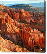 Red Glow On The Hoodoos Of Bryce Canyon Acrylic Print
