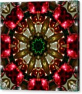 Red Gold Green Kaleidoscope 1 Acrylic Print