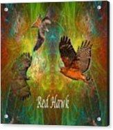 Red Hawk Moon Acrylic Print