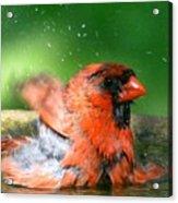 Red Hot Bath Acrylic Print