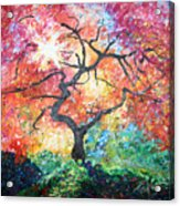 Red Japanese Maple Acrylic Print
