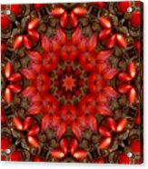 Red Kaleidoscope No. 1 Acrylic Print