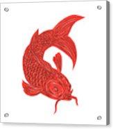 Red Koi Nishikigoi Carp Fish Drawing Acrylic Print