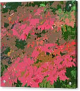 Red Leafs Work Number 12 Acrylic Print