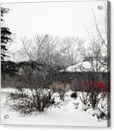 Red Leaves On White Snow Acrylic Print