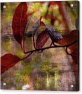 Red Leaves Painted Effect Acrylic Print