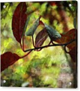 Red Leaves With Texture Acrylic Print