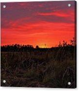 Red Marsh Sunrise Acrylic Print