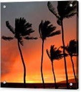 Red Maui Sunset Hawaii Acrylic Print